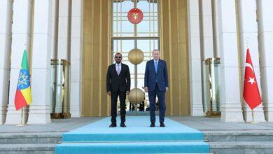 Cumhurbaşkanı Erdoğan, Etiyopya Başbakanı Ahmedi kabul etti