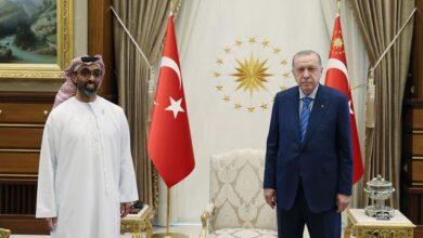 Cumhurbaşkanı Erdoğan, BAE Ulusal Güvenlik Danışmanını kabul etti