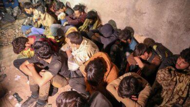Vanda 25 düzensiz göçmen yakalandı