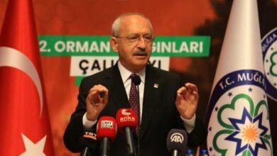 CHP lideri Kılıçdaroğlu: Ormanlar ortak varlığımız