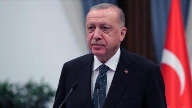"""Cumhurbaşkanı Erdoğan, """"Filenin Efeleri""""ni tebrik etti"""