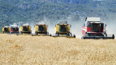Tarım sektöründen üst üste büyüme başarısı